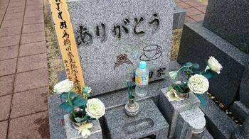 140824墓参り.jpg